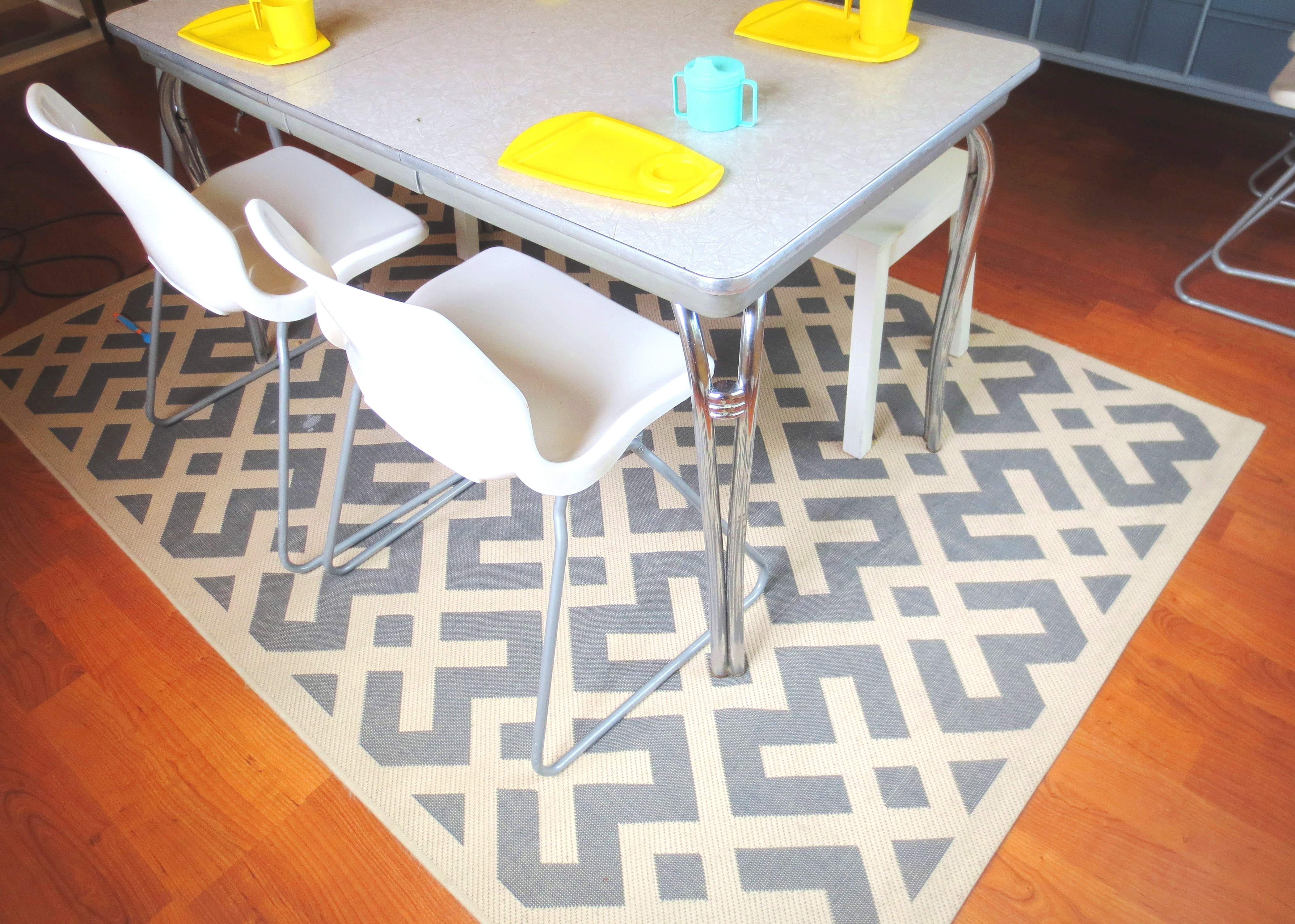 Indoor Outdoor Rug For Easy Cleaning In The Dining Room Picture 1257