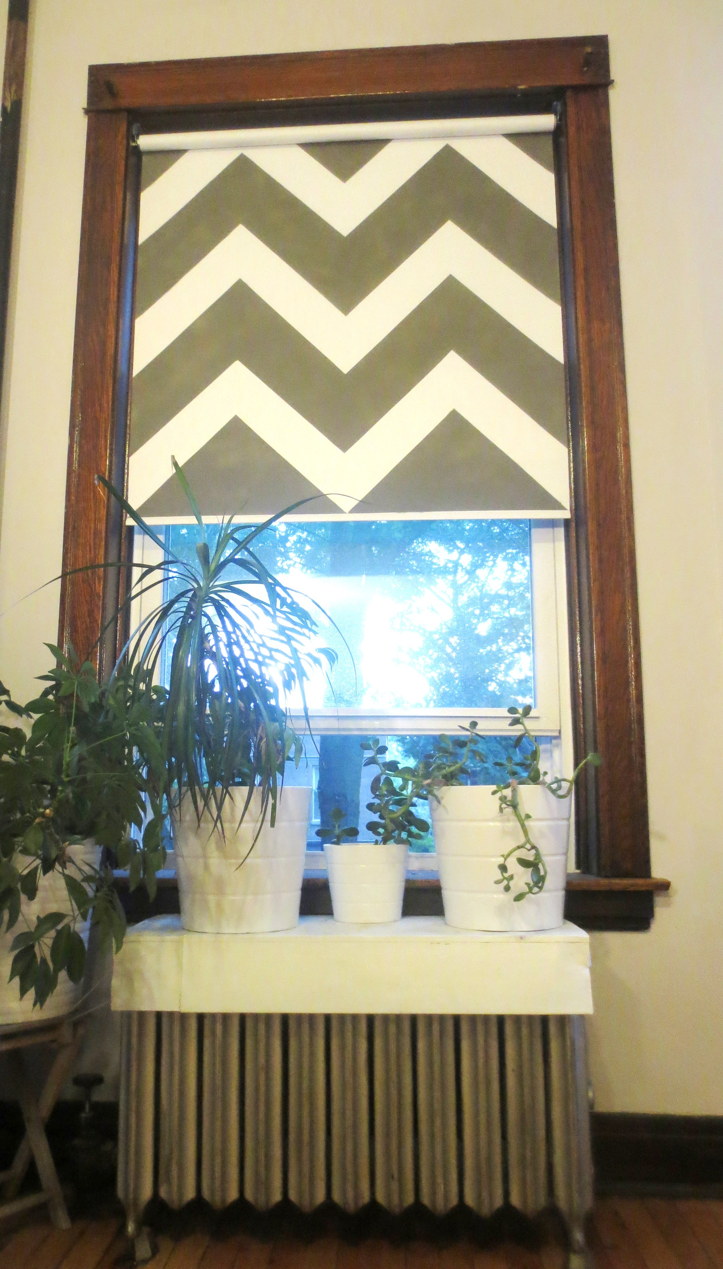 Painted Roller Shades : Turn your ugly vinyl roller shade into a work of art